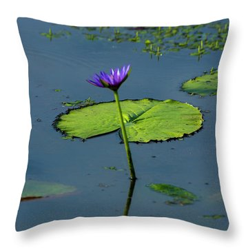 Throw Pillow featuring the photograph Water Lily 2 by Buddy Scott