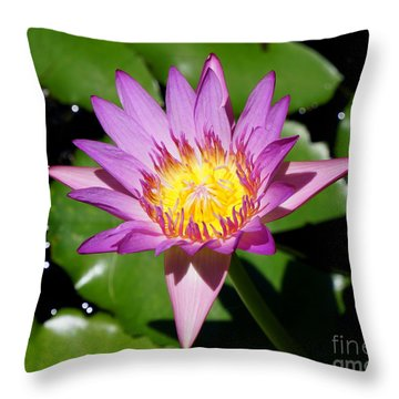 Water Lily 8 Throw Pillow