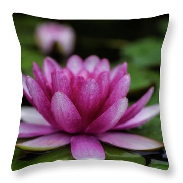 Water Lily After Rain Throw Pillow