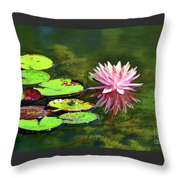 Water Lily And Frog Throw Pillow by Savannah Gibbs