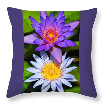 Water Lily Blossoms Throw Pillow by Kerri Ligatich