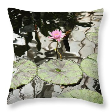 Water Lily Canvas Throw Pillow by Carol Groenen