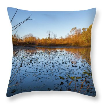 Water Lily Evening Serenade Throw Pillow