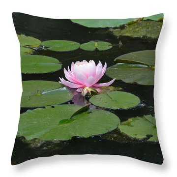 Throw Pillow featuring the photograph Water Lily In Pink by Kathleen Stephens