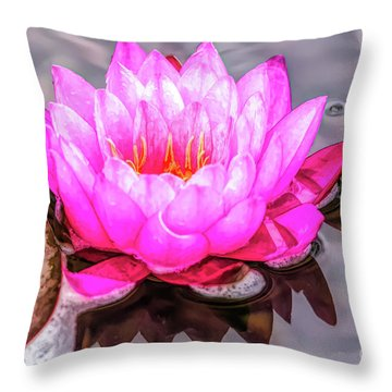 Water Lily In The Rain Throw Pillow