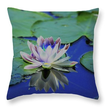 Water Lily  Throw Pillow by Karol Livote