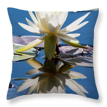 Throw Pillow featuring the photograph Water Lily by Mary Hone