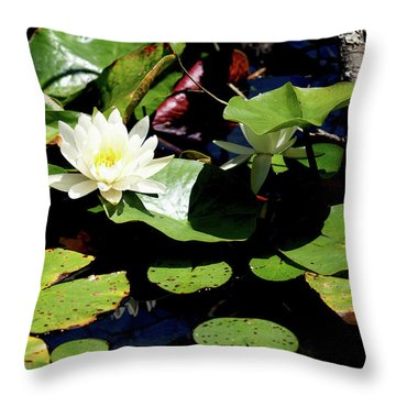 Throw Pillow featuring the photograph Water Lily by Meta Gatschenberger