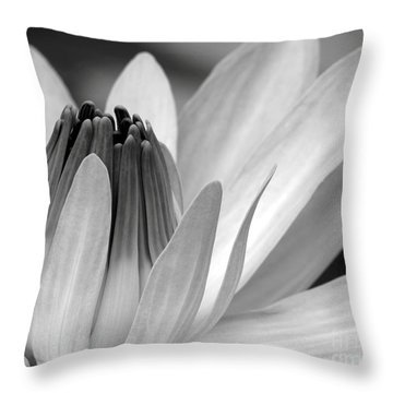 Water Lily Opening Throw Pillow