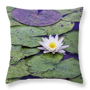Water Lily Panorama Throw Pillow