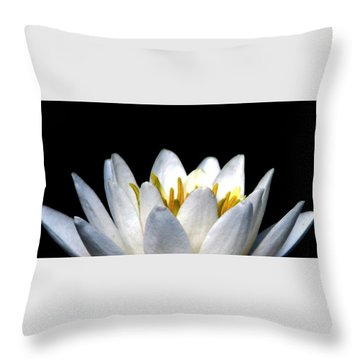 Water Lily Petals Throw Pillow by Angela Davies