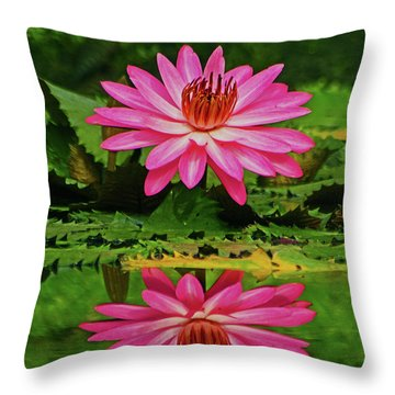 Hot Pink Water Lily Reflection Throw Pillow by Larry Nieland