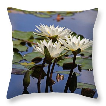 Water Lily Reflections Throw Pillow
