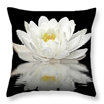 Water Lily Reflections On Black Throw Pillow by Gill Billington