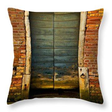 Water-logged Door Throw Pillow