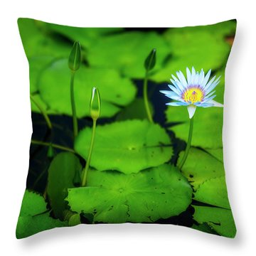 Throw Pillow featuring the photograph Water Logged by Ryan Manuel