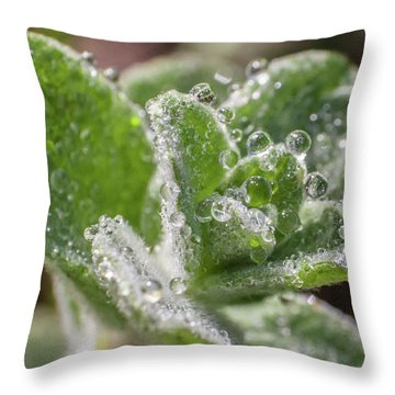 Water Necklaces Throw Pillow by Sergey Simanovsky