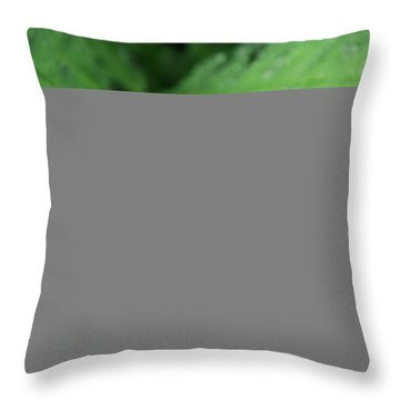 Water On The Fronds Throw Pillow