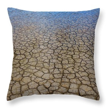 Water Over Drought Throw Pillow