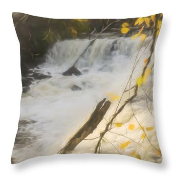Water Over The Dam. Throw Pillow