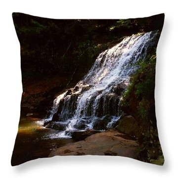 Water Path Throw Pillow by Raymond Earley