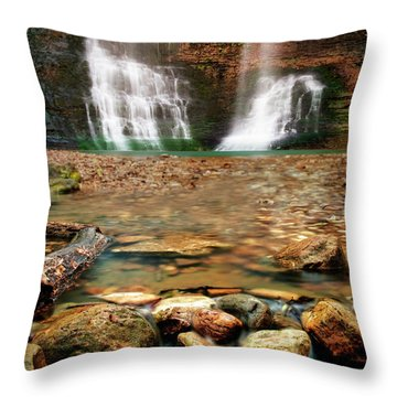 Water Path Throw Pillow by Tamyra Ayles