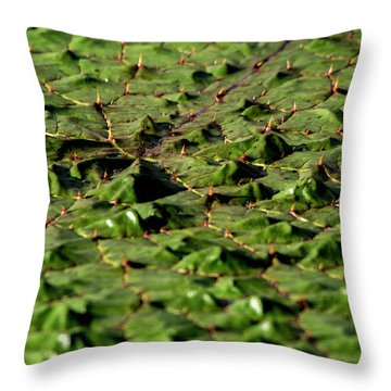 Throw Pillow featuring the photograph Water Plant 3 by Buddy Scott