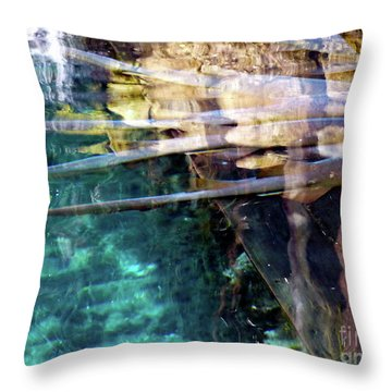 Throw Pillow featuring the photograph Water Reflections by Francesca Mackenney