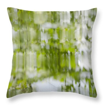 Throw Pillow featuring the photograph Water Reflections by Wanda Krack