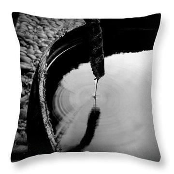 Water Rings Throw Pillow