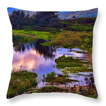 Water Scene Beauty 3 Throw Pillow