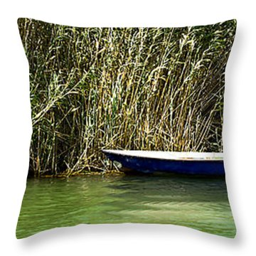 Water Scene Pano Throw Pillow by Svetlana Sewell