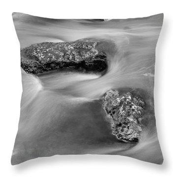 Water Throw Pillow by Scott Meyer