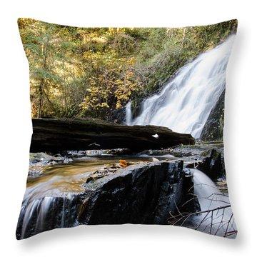 Water Seeking Paths Throw Pillow