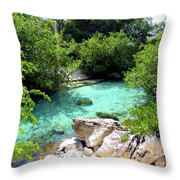 Throw Pillow featuring the photograph Water Shallows by Francesca Mackenney
