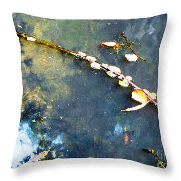 Water, Sky, Stick Throw Pillow by Melissa Stoudt