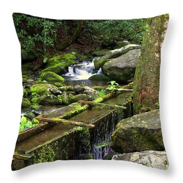 Water Sluice  Throw Pillow by Marty Koch