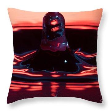 Water Spout Throw Pillow