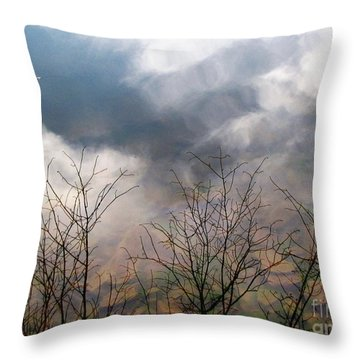 Water Study Throw Pillow
