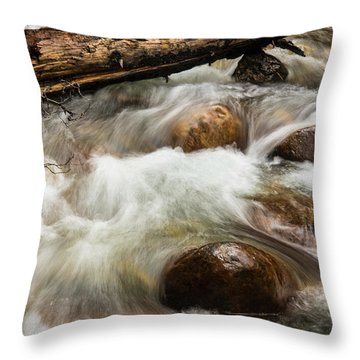 Throw Pillow featuring the photograph Water Under The Bridge by Alex Lapidus