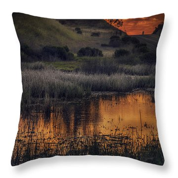 Waterbird Preserve Sunrise Throw Pillow