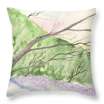 Watercolor Barn Throw Pillow by Darren Cannell