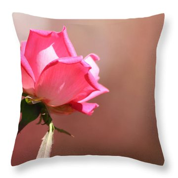 Watercolor Rose Throw Pillow by Michele Wilson