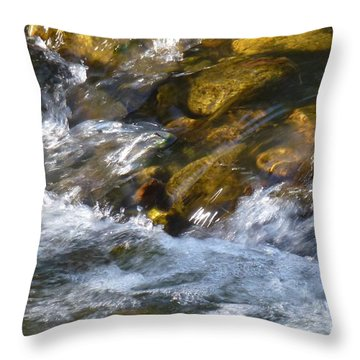 Throw Pillow featuring the photograph Watercourse by Jean Bernard Roussilhe