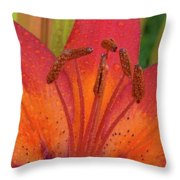 Throw Pillow featuring the photograph Watered Lily by Jean Noren