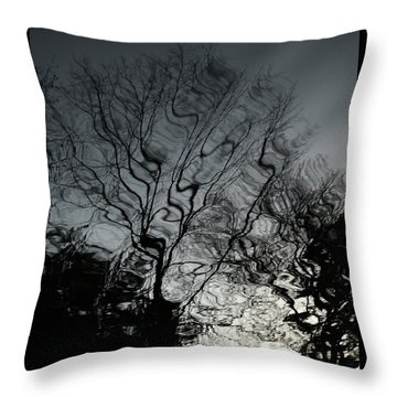 Watereflct4 Throw Pillow