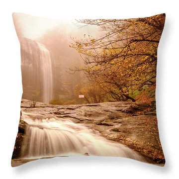 Waterfall-11 Throw Pillow