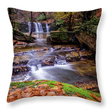 Waterfall-2 Throw Pillow