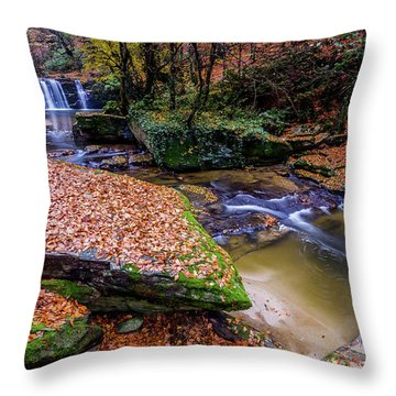 Waterfall-3 Throw Pillow