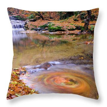 Waterfall-5 Throw Pillow